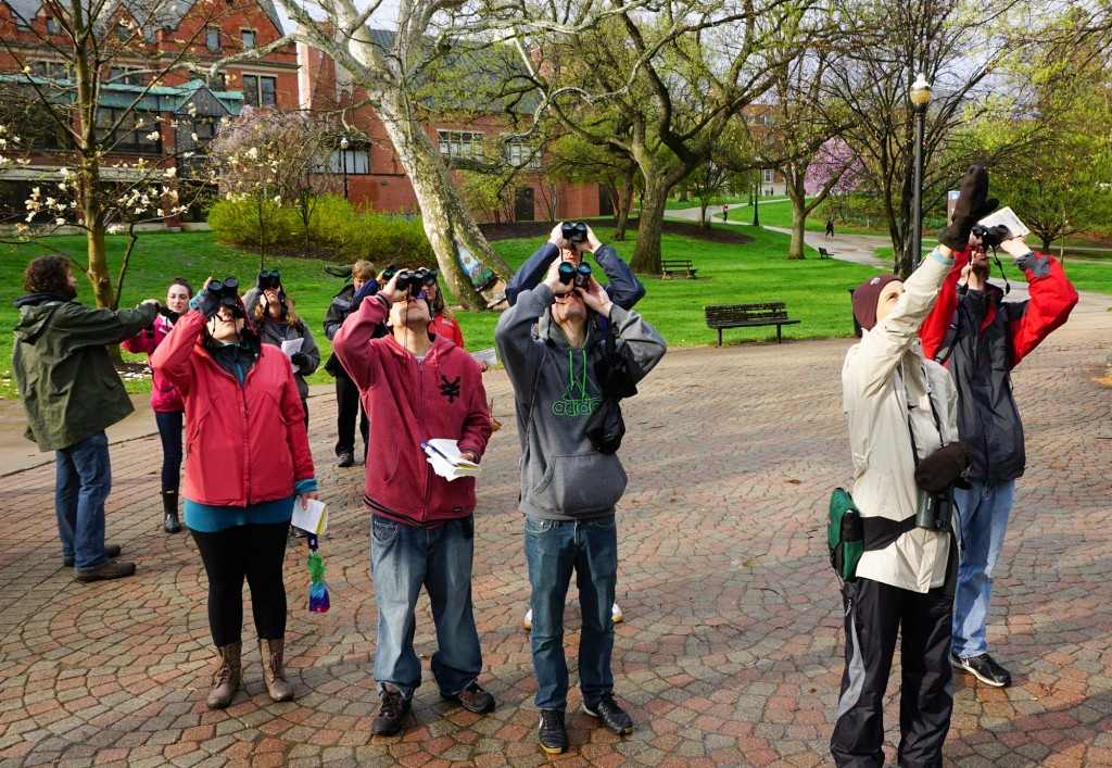 birding-with-angelika-nelson-at-OSU